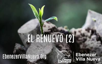 EL RENUEVO (2)
