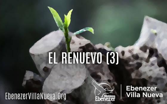 EL RENUEVO (3)